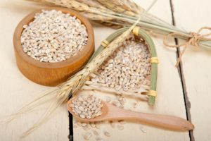 Barley Substitutes