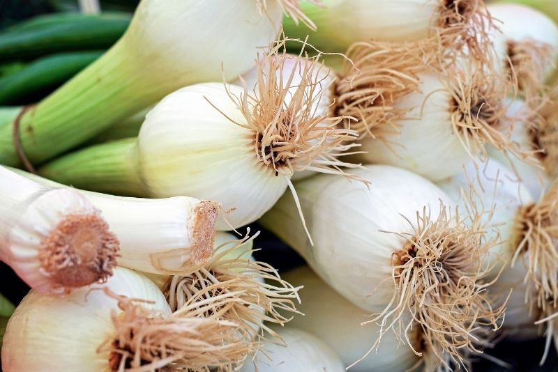 Spring Onion Substitutes