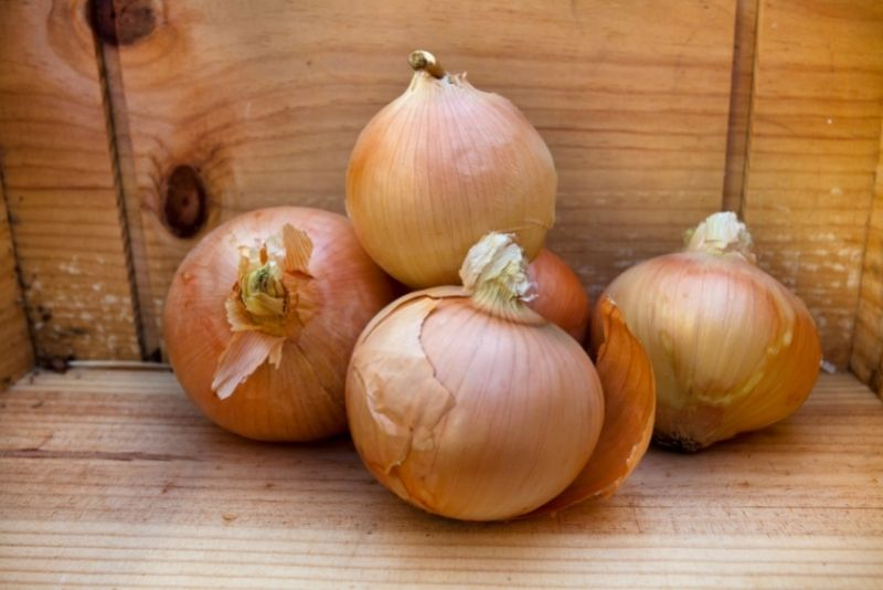 Yellow or Sweet Onions