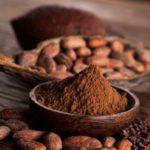 Cocoa Powder Substitutes