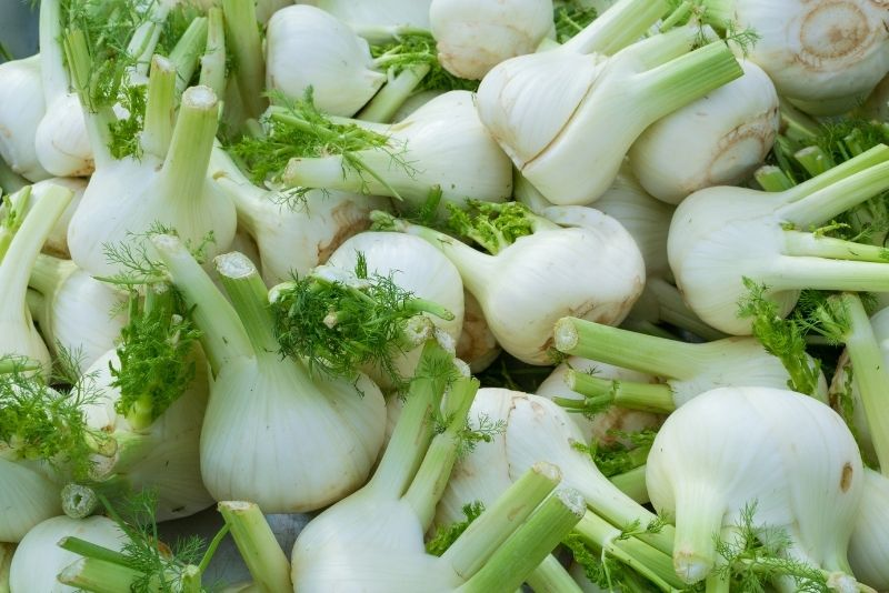 Fennel Bulb Substitutes