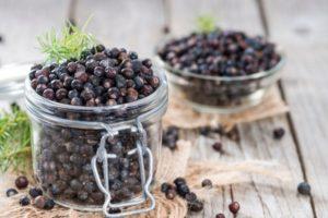 Juniper Berries Substitutes