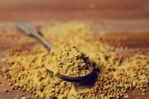 Mustard Powder Substitutes