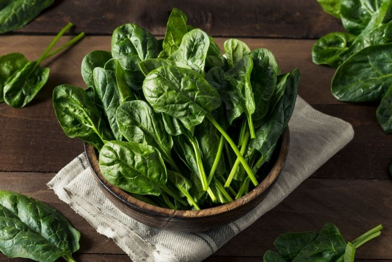 Spinach Substitutes